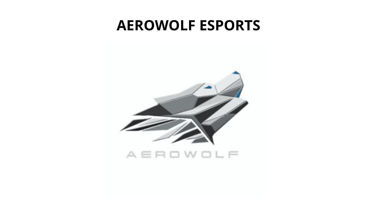 tim esports di Indonesia Aerowolf