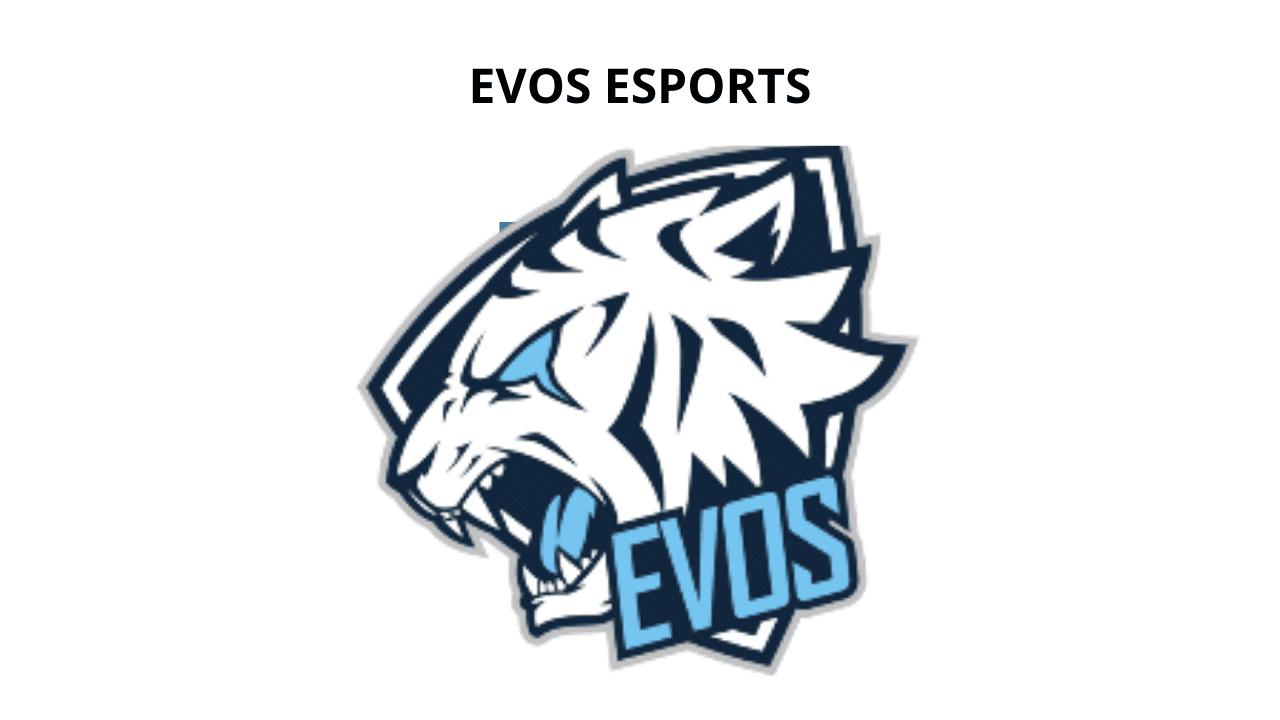 tim esport terbesar di Indonesia EVOS Esports